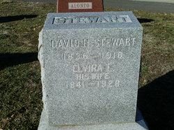 David H Stewart