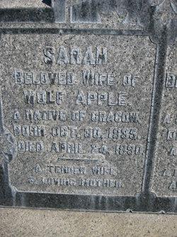 Sarah <i>Kellner</i> Apple