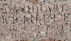 David Art Brinlee