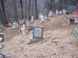 Williamson & Hatfield & Coleman Family Cemetery