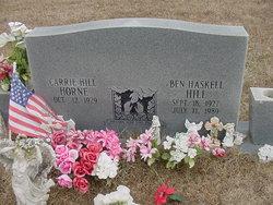 Ben HaskelL Hill