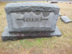 Lena Ann <i>Huddle</i> Dix
