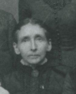 Erycenia Penthecelia Erie <i>Foster</i> Alford