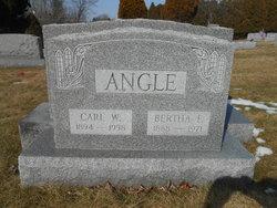 Carl William Angle