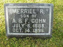 Merrill R. Cohn