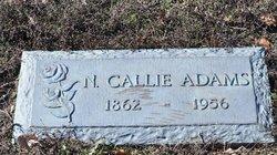 Nancy Callie <i>Wright</i> Adams