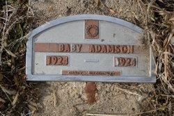 Infant Child Adamson
