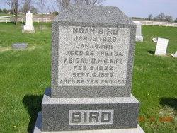 Abigail D. <i>Mathis</i> Bird