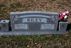 Theresa Sue <i>McGowen</i> Riley