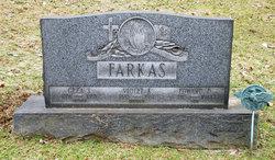 Sgt Edward D Farkas
