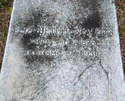 Annie Elizabeth Lizzie <i>Farrar</i> Newton