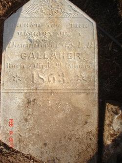 Infant Gallaher