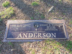 Wendy Dianne <i>Watkins</i> Anderson