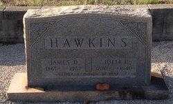 Julia Indiana <i>Buffington</i> Hawkins