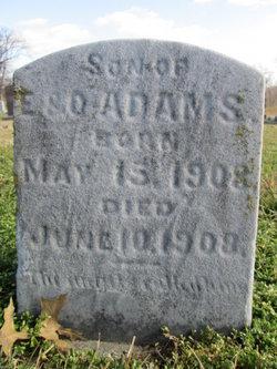 Arthur E. Adams