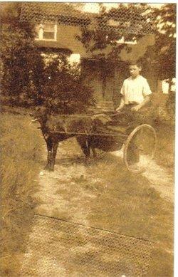 Arthur Melville Adams, Jr