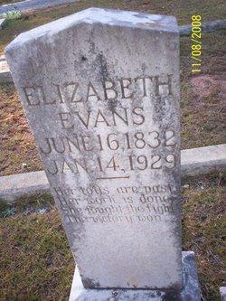 Elizabeth Frances <i>Lovelady</i> Evans