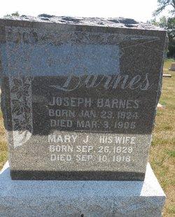 Mary Jane <i>Darland</i> Barnes