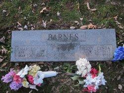 Mary Cinda Barnes