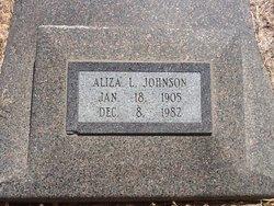 Aliza L Johnson