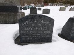 Ansel A. Harmon