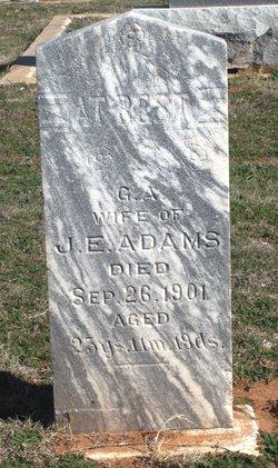 G. A. Adams