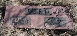 George Washington Reed