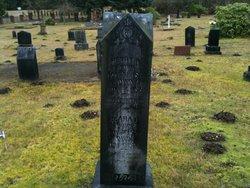 Elizabeth Ann Lizzie <i>Ford</i> Ticknor