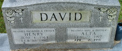 Alta David