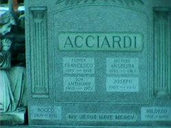 Anthony Acciardi