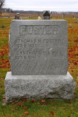 Thomas Martin Foster