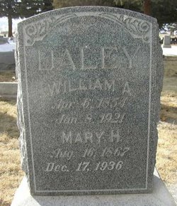 Mary H Daley