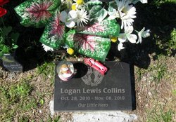Logan Lewis Collins