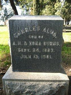 Charles Alva Burns