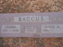David Norman Blackie Baccus