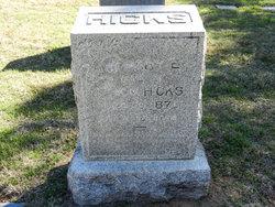 Mary Elizabeth <i>Roberts</i> Hicks