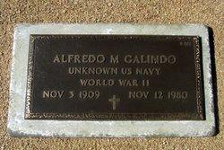 Alfredo M Galindo