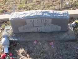 Alex J Austin