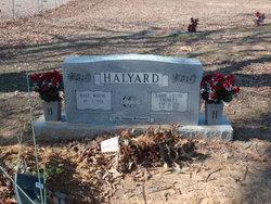 Dale Wayne Halyard