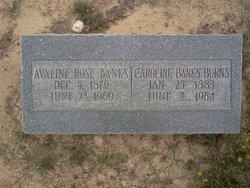 Aveline Rose <i>Banks</i> Banks