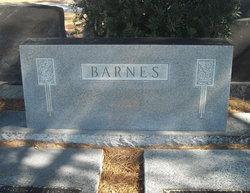 Nancy Elizabeth <i>Lynn</i> Barnes