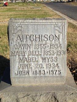 John William Aitchison