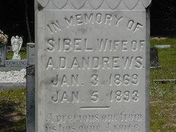 Sibel Civility <i>Hickox</i> Andrews