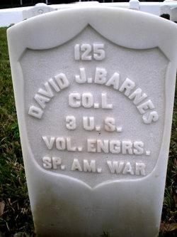 David J Barnes