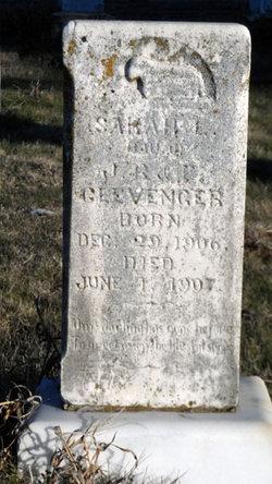 Sarah L. Clevenger
