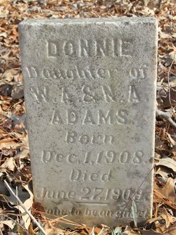 Donnie Adams