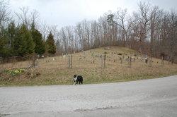 Swindling Gap (Northeast) Cemetery