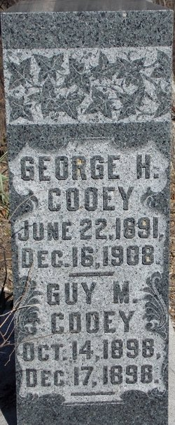 George H Cooey