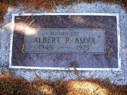 Albert R Amyx