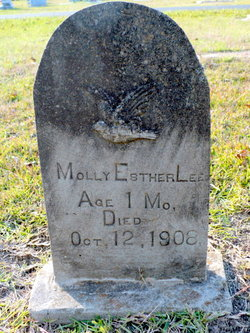 Molly Esther Lee